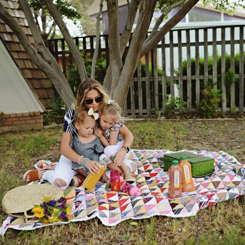 picnic with tropicana probiotics essentials